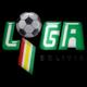 Campeonato Boliviano